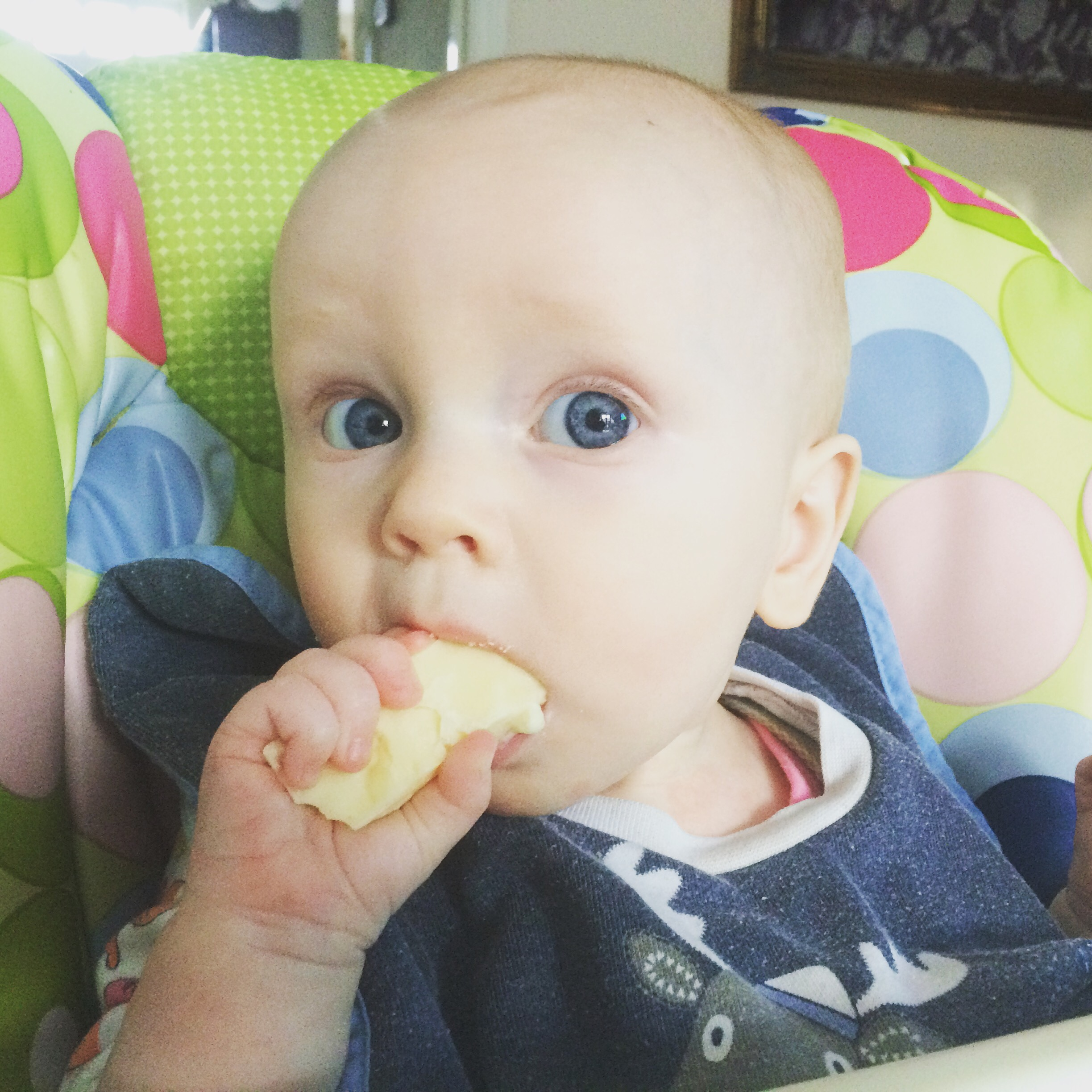 A baby eating a block of cheese