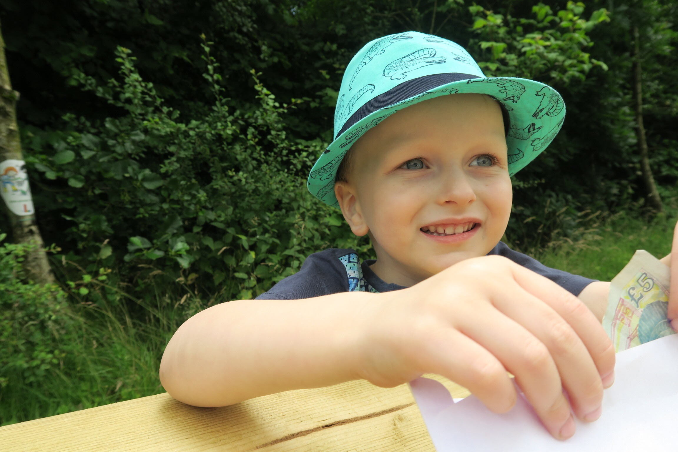 A 4 year old boy wearing a green hat sat at a picnic table counting his holiday money